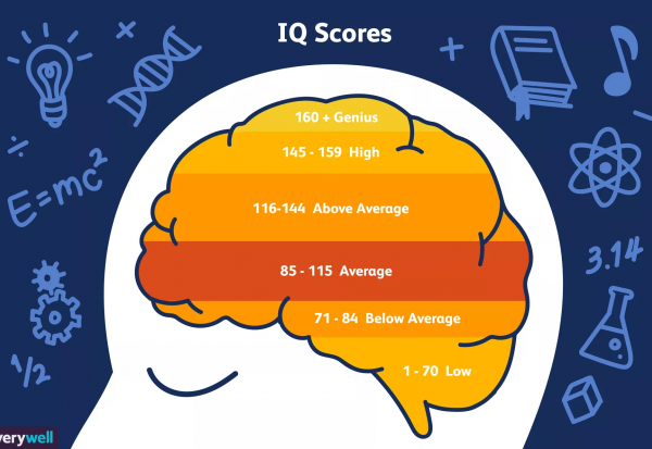 Cara Efektif Meningkatkan IQ Anak